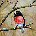 Scarlet Robin  by Jennie Liebich