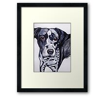 #3: The Catahoula Leopard Dog: Messages from the Dogs Oracle Deck Framed Print