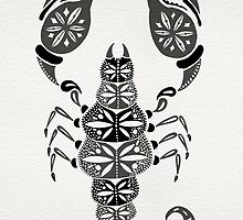 Black Scorpion by Cat Coquillette