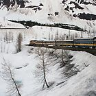 Rail Alaska by DianaC