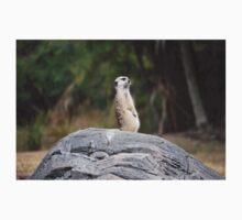 Meerkat standing tall Kids Tee
