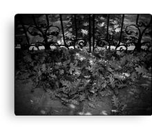 Urban Landscape # 3 Autumn's Gate Canvas Print