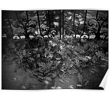 Urban Landscape # 3 Autumn's Gate Poster
