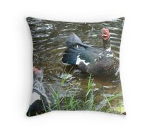 LAUGHING OUT LOUD (LOL) - DUCK STYLE Throw Pillow