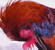Rooster by ClaireBull