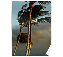 Island Breeze Poster