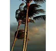 Island Breeze Photographic Print