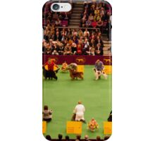 Sporting Group iPhone Case/Skin