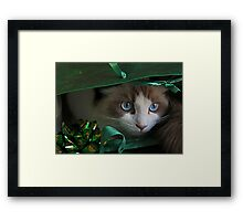 A Christmas Surprise Framed Print