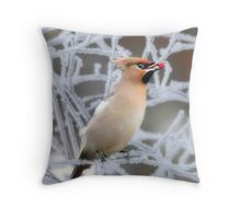 Winter fruit for a winter visitor Throw Pillow