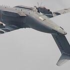 Airbus A400M Atlas Valedation Flight - Farnborough 2014 by Colin  Williams Photography