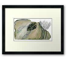 Mythical Flying Trilobite Fossil III Framed Print