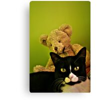 Big Teddy And Tuxedo Cat Canvas Print