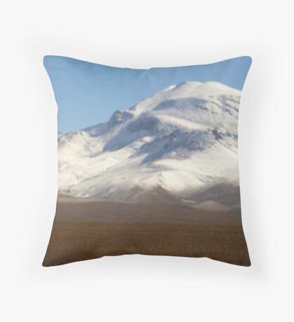 Altiplano Throw Pillow