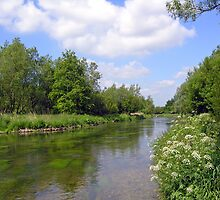 The River Itchen in summer at Martyr Worthy, Hampshire, southern England by Philip Mitchell