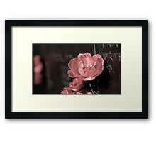 Remember Hawkins Framed Print