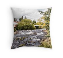 Meander River at Deloraine Throw Pillow