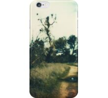 the hole iPhone Case/Skin