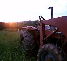 Tractor by Becky James