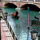 A TOUCH OF VENICE by pinkster