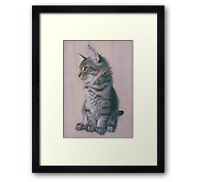 Contemplating Mischief Framed Print