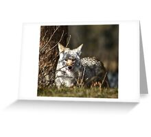 We eat, therefore we hunt.  Greeting Card