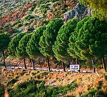 Sapri, Campania by Jonathan Posner