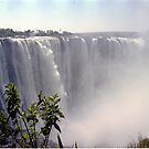 Victoria Falls, Zimbabwe, Africa by Bev Pascoe
