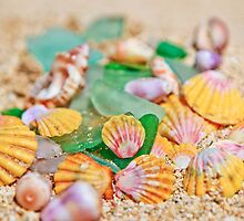 Sunrise Shells & Sea Glass by Angelina Hills
