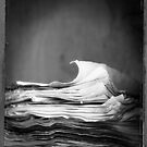 The journal by Jean-François Dupuis