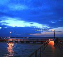 Ross Barnett Reservoir by Danny  Cross
