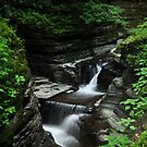 Cascading Falls at Watkins Glen in New York by 1busymom