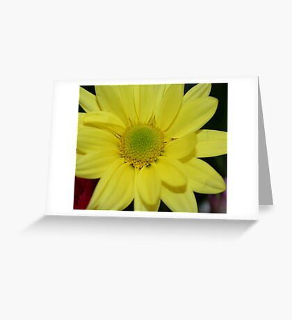 Beauty In The Middle Greeting Card