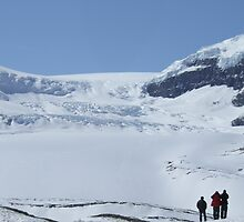 Athabasca Glacier, Icefield Parkway. April 2007. by Phil Mitchell