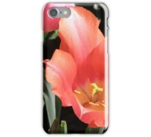 Tulip Blooms iPhone Case/Skin