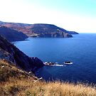 Cliffs of Meat Cove by George Cousins