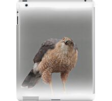 Sharp-Shinned Hawk iPad Case/Skin