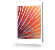 Songlit Streaks Greeting Card