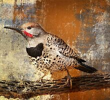 Gilded Flicker by Barbara Manis