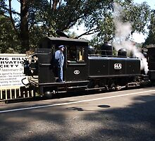 Puffing billy # 5 by Virginia McGowan