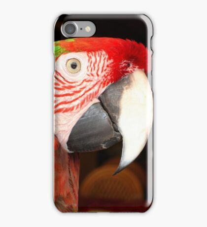 A Beautiful Bird Harlequin Macaw Portrait iPhone Case/Skin