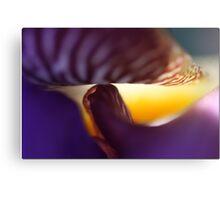 Smiley Iris: A Series Canvas Print
