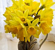 Daffodils by the Window by DonDavisUK