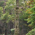 New York Trinity Cemetery by pchm