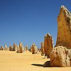 Pinnacles by DianaC