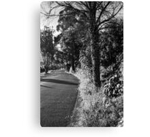 A Road in Hobart Canvas Print