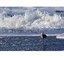 Is That a Wave I Hear? Photographic Print
