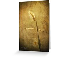 Sighing of Changes ... (Summer Grasses IV) Greeting Card