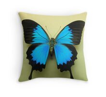 Ulysses butterfly Throw Pillow