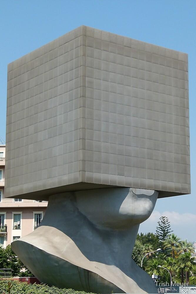 Square Head by Trish Meyer